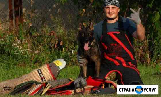 Дрессировка собак всех пород Ессентукская