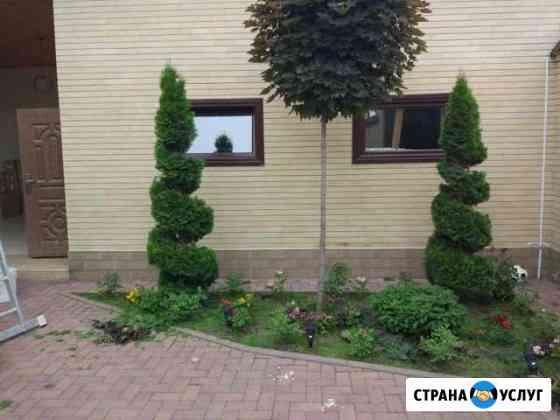 Ландшафтный дизайн. Озеленение Грозный