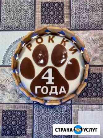 Торты для собак и кошек Красноярск