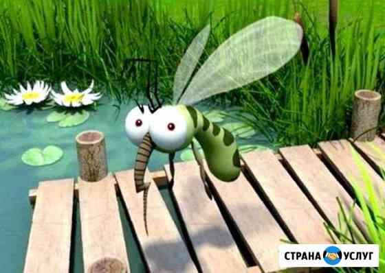 Уничтожение комаров, муравьев, клещей, плесени Астрахань