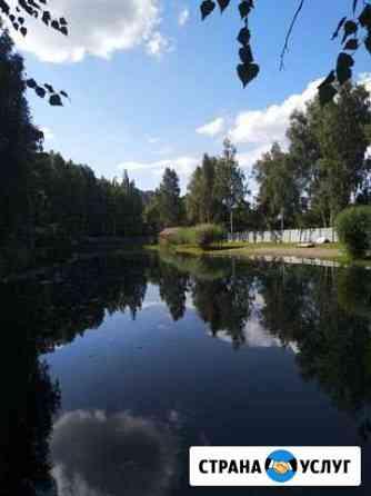 Отдых на Алтае Горно-Алтайск