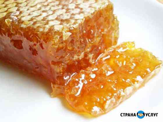 Мёд пчелиный Абакан