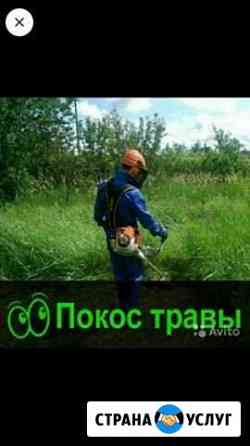 Покос травы Кузнецк