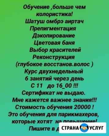 Колорист Грозный