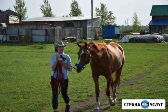 Конные прогулки фотосессия на лошадях Ульяновск