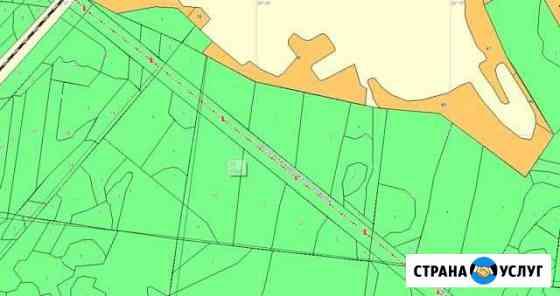 Услуги по созданию тематических лесных карт Муромцево