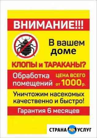 Уничтожение Клопов,Тараканов Северодвинск