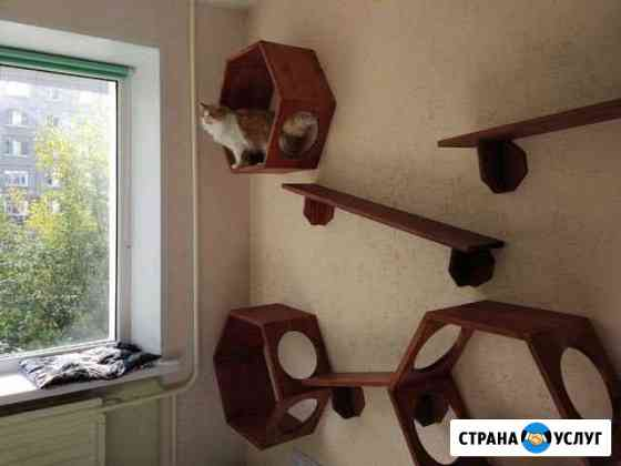 Зоогостиница,передержка для кошек Ижевск