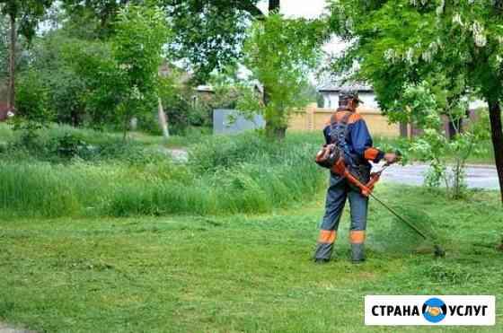 Покос травы и Спил кустарников Рязань