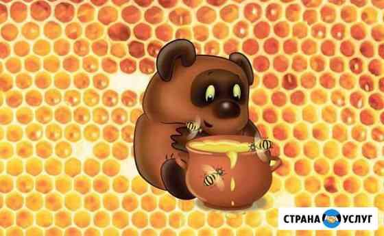Продаю цветочный мёд Барда