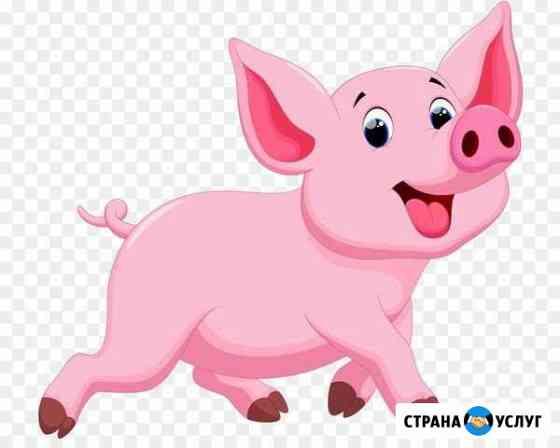 Продам мясо свинины и говядины Ангарск