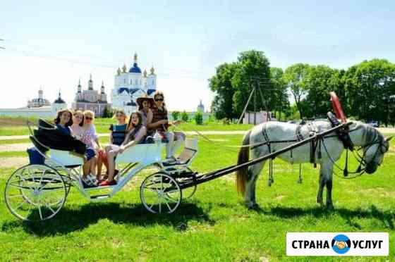 Прогулки, фотосессии, свадьбы, дни рождения Брянск