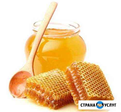 Продам натуральный мёд Севастополь