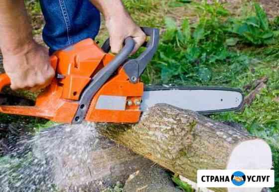 Подвалю деревья,пилю дрова,валка деревьев Клинцы