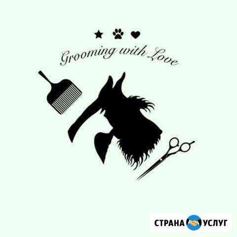 Стрижка собак и кошек Ульяновск