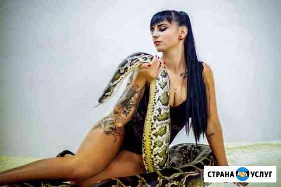 Фотосессии с рептилиями, змеями и крокодилом Красноярск