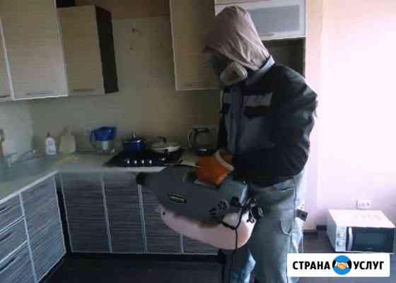 Уничтожение плесени, тараканов, клопов, запахов Хабаровск