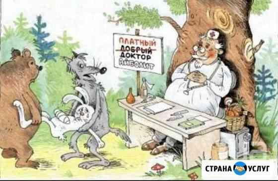 Вызов ветеринарного врача Новосибирск