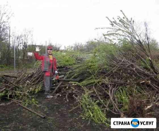 Расчистка участков спил деревьев Петрозаводск