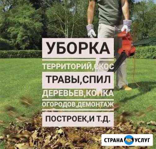 Предложение услуг Владикавказ