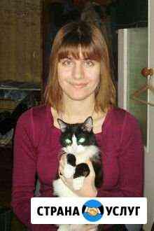 Уход за кошками с выездом на дом Калуга
