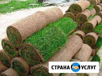 Руллонный,посевной газоны, Водоемы,Отсыпки Липецк