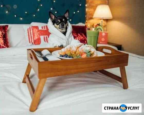 Гостиница для собак/Зоогостиница Красноярск