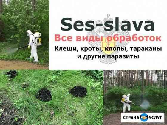 Уничтожение Клопов Тараканов Клещей Комаров Мышей Тамбов