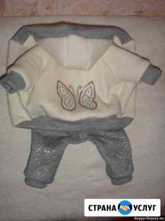 Пошив одежды для собак Тула