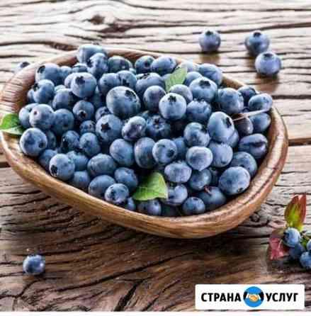 Продукты питания Дзержинск