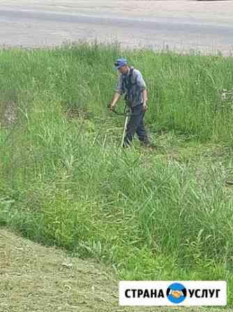 Покос травы, вырубка деревьев Хабаровск