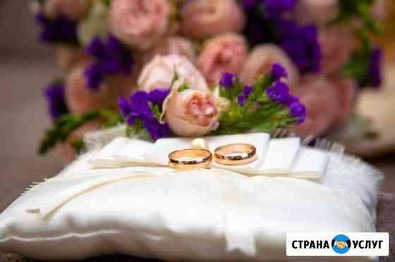 Фото и видео Свадьбы Ярославль