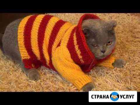 Вязание спицами Нижний Новгород
