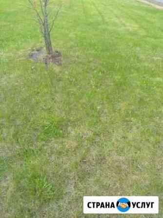 Скошу траву Шарья
