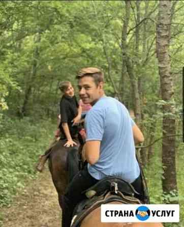 Прогулки на лошадях Архангельск
