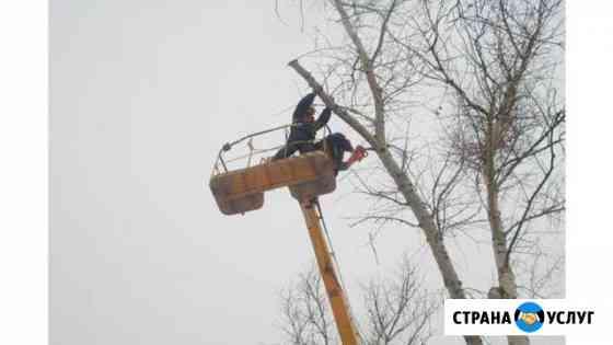 Спил, подрезка деревьев, корчевание Хабаровск