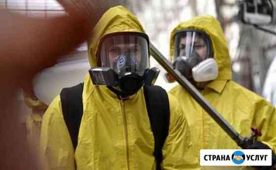 Дератизация, Дезинсекция, Дезинфекция в помещениях Петрозаводск