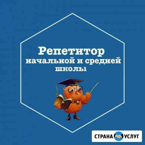 Репетитор начальной и средней школы Владикавказ