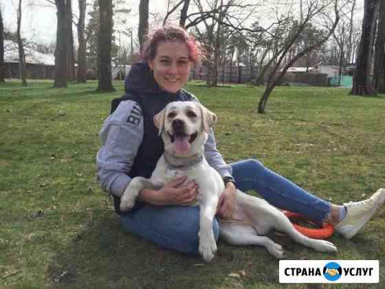 Домашняя передержка собак и кошек Краснодар