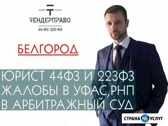 Юрист по госзакупкам 44фз рнп Белгород Белгород