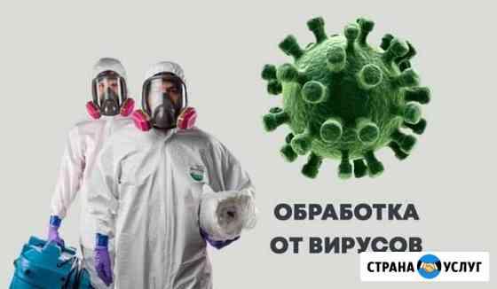 Обработка от вирусов. Дезинфекция холодный туман Ульяновск