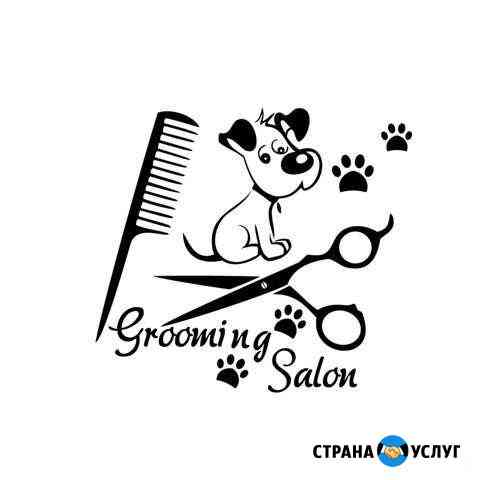 Груминг, стрижка собак Кострома