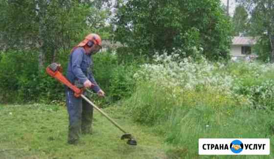Покос травы Чебоксары
