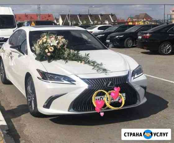Прокат авто Сатинка