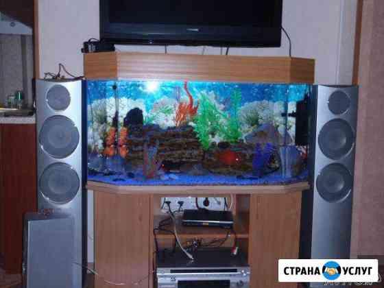 Обслуживание аквариумов от 150 и более литров Казань