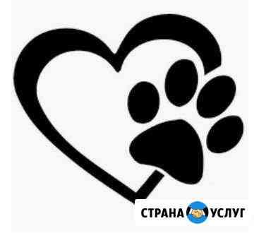 Ветеринарные услуги Бийск
