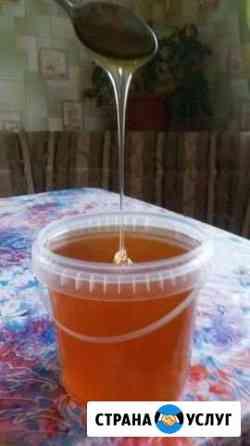 Цветочно-луговой мёд 2020 года Псков