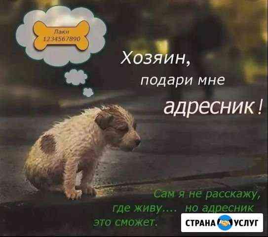 Адресник для животных Новотроицк