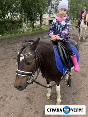 Прокат на пони/верховой лошади Череповец