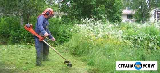 Покос травы Кимры